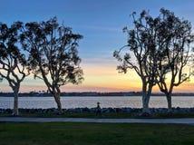 Jogger bieg przy zmierzchem wzdłuż nabrzeże miastowego parka, San Diego, zdjęcia royalty free