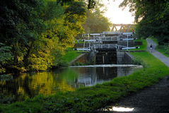 Jogger and Canal Stock Photo