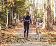 Jogger en akitahond die in openlucht lopen Sporten en gezond concept royalty-vrije stock afbeeldingen