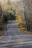 Jogger on forest road on sunny day in late fall Stock Photography
