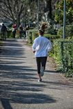 Jogger. With hair flying out running in morning sun stock photography