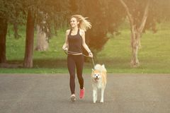 Jogger i Akita pies biega outdoors obraz royalty free