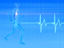 Jogger - pulse. 3d rendered illustration of a transparent jogger with vascular system and heartbeat Royalty Free Stock Photography