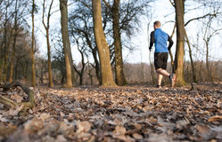 Jogger running in the forest Stock Photos