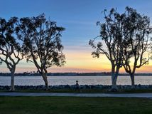 Jogger running at sunset along waterfront urban park, San Diego, Royalty Free Stock Photos