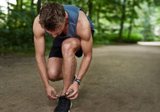 Jogger tying his shoe laces. Fit muscular male jogger bending down tying his shoe laces in a track through a lush wooded park in a healthy lifestyle concept Royalty Free Stock Images