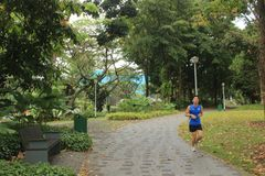 Jogger w Bishan Ang Mo Kio parku w Singapur Obraz Royalty Free