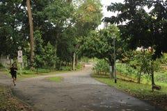 Jogger w Bishan Ang Mo Kio parku w Singapur Fotografia Royalty Free