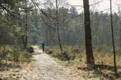 Jogger w lesie Obraz Royalty Free