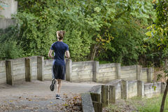 Jogger in the woods Royalty Free Stock Images