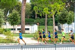 Joggers biegać zdjęcia stock