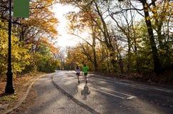 Joggers in het de herfstpark Royalty-vrije Stock Afbeeldingen
