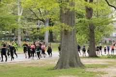 Joggers i Central Park, New York City royaltyfri foto