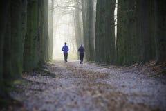 Joggers i en parkera royaltyfria foton