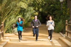 Joggers in the park stock images