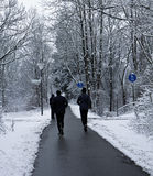 Joggers run on path among wood in wintertime stock photos