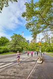 Joggers running through Central Park. royalty free stock image
