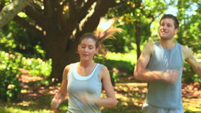 Joggers stopping to rest. Athletic couple taking a rest while jogging in the wood stock video footage