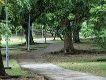 Jogging ścieżkę i Jeździć na rowerze Zdjęcie Stock
