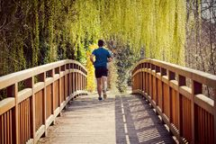 Jogging δραστηριότητα Workout, δυναμικός αθλητής δρομέων στοκ φωτογραφία με δικαίωμα ελεύθερης χρήσης