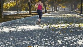 jogging νεολαίες γυναικών πάρκ&om απομονωμένο οπισθοσκόπο λευκό απεικόνιση αποθεμάτων