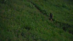 Jogging στα βουνά του δάσους απόθεμα βίντεο