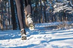 Jogging в зиме Бежать через снег снег леса бега стоковое изображение
