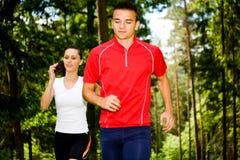 Jogging в пуще Стоковое Фото