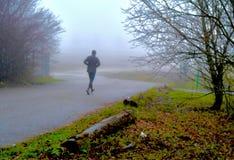 Jogging в туманных утрах стоковая фотография rf