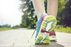 Jogging в утре Стоковые Изображения