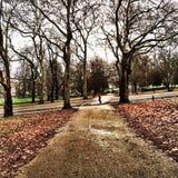 Jogging на Finsbury Park Стоковое Изображение