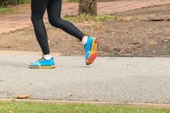 jogging парк Стоковое Фото