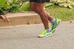 jogging парк Стоковое Изображение