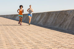 jogging совместно 2 женщины молодой Стоковые Изображения RF