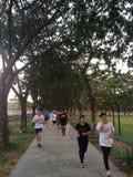Jogging след Стоковое Изображение