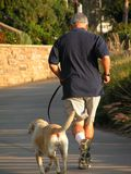 Jogging. Middle-aged man jogging with dog royalty free stock photography
