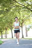 jogging όμορφη γυναίκα πάρκων Στοκ Φωτογραφία