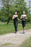 Jogging. Two girls are jogging in the nature Stock Images