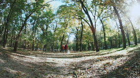 Jogging in the autumn forest. Two young girls and a dog fox terrier. Falling leaves, trees, pathway stock video