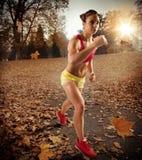 Jogging in autumn Stock Image