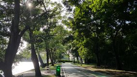 Jogging and bicycle lane in a park. Jogging and bicycle lane by a lake in a park in the afternoon Royalty Free Stock Photos