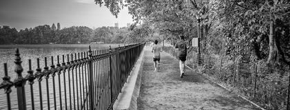 Jogging in Central Park, New York City, USA royalty free stock images