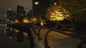 Jogging Coal Harbor Seawall Night, Vancouver stock footage
