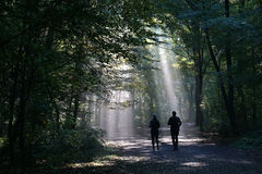 Jogging couple silhouetted against sunbeam in dark forest. Jogging couple silhouetted against sunbeam in dark foggy forest Royalty Free Stock Image