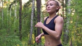 Jogging dziewczyna Mięśniowy młoda kobieta bieg przez lasu w promieniach położenia słońce swobodny ruch zbiory