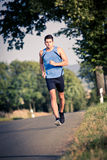 Jogging through the fields Royalty Free Stock Photos
