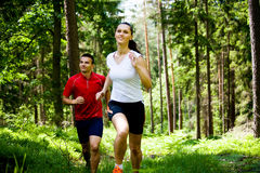 Jogging in forest Stock Images