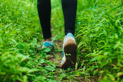 Jogging in forest Royalty Free Stock Photos