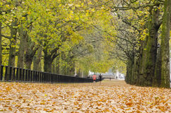 Jogging, Hyde Park, London. Jogging, Hyde Park a favorite vacation sport visitors and Londoners Stock Images