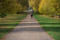 Jogging in Hyde Park, London Royalty Free Stock Photos